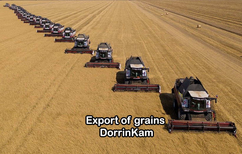 Export of grains
